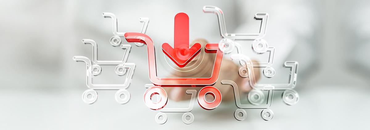 d-moda gestionale ecommerce btob